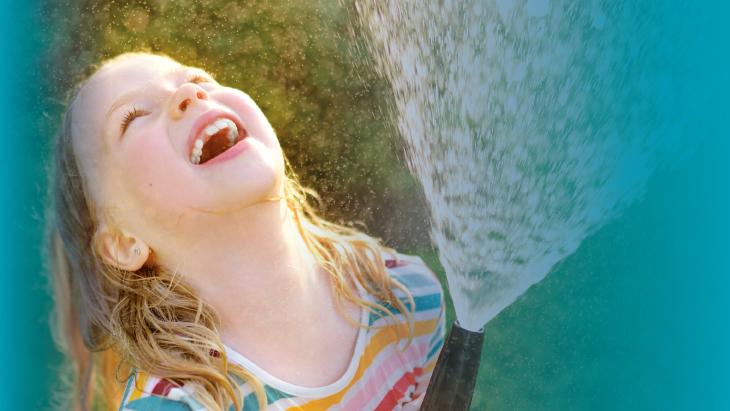 Foto: MNStudio/Shutterstock.com